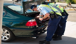 search and seizure laws